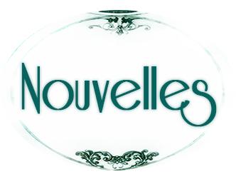 logo-nouvelles-chroniques-des-fontaines-definitif-okrecolor-bold